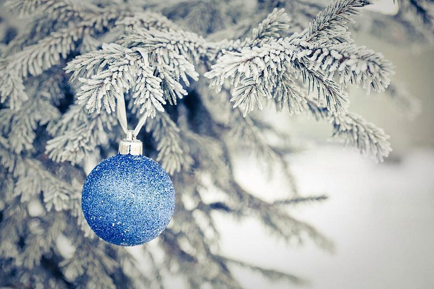 Ёлочный шар на снежной ели
