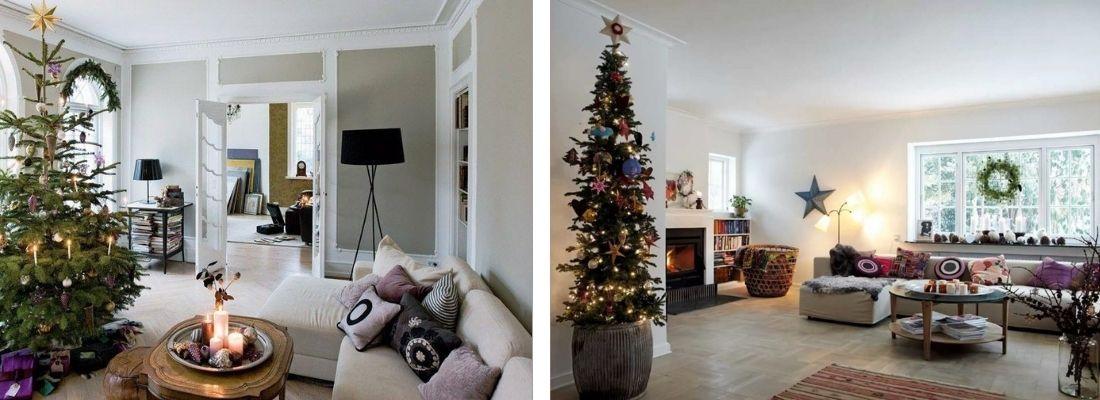 Какие елки популярны в Польше