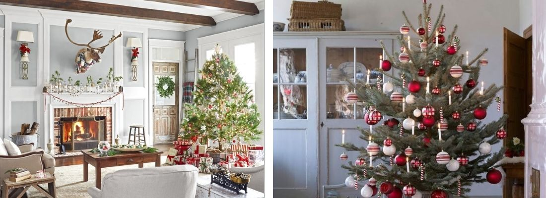Какие елки популярны во Швеции